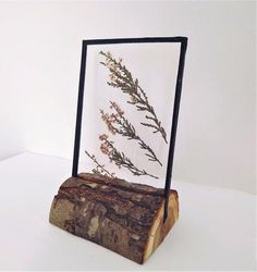 Decor herbarium pressed forest plants in frame on the wooden stand - natural pressed flower frame - decor for office reception - Wohnung - bilderrahmen Diy Flowers, Flower Pots, Pressed Flower Art, Diy Presents, Decorate Your Room, Paint Colors For Home, Flower Frame, Forest Plants, Decorating Your Home