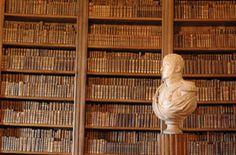 Chateau de la Rochefoucauld: deuxième bibliothèque -