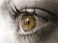 Entrenando la vista: La MIOPIA una pandemia que caracteriza nuestra soc...