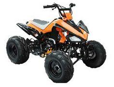 T Rex Motorcycle For Sale Cheap >> 49 Best ATV /4 Wheelers images | Atv, 4 wheelers, Sport atv