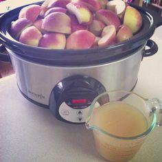 No peel crockpot apple sauce from SewCreativeBlog.com - DG: 1/2 cup lemon juice, 1/2 cup brown sugar, 2 shakes cinnamon, 1 cup water