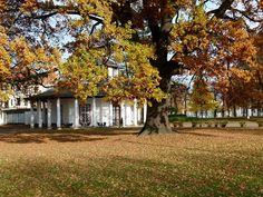 Herbstliche Malreise an die Ostsee   Weißer Pavillon auf dem herbstlichen Kamp (c) FRank Koebsch (2)