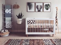 we can almost hear the elephant trumpets in this gorgeous safari nursery • #babyletto Lolly crib • ���