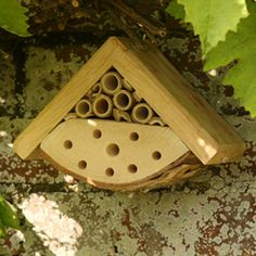 Garden bug box - natural habitat for ladybirds and solitary bees from FSC Trademark Licence holder Hen and Hammock Back Gardens, Outdoor Gardens, Water Gardens, Garden Terrarium, Terrariums, Bug Hotel, Mason Bees, Garden Bugs, Bee Boxes