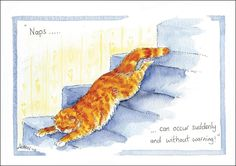 Naps can occur suddenly Greetings Card CODE C 158