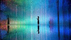 DMM.PLANETS Art by teamLab | July 16 - August 31, 2016