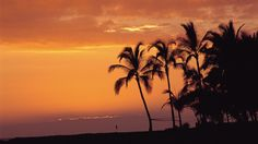 10. Hawaii is one place I would love to visit because of it's beauty.