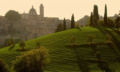 Sunset in Urbino by Köles Mihály Barcelona Cathedral, Monument Valley, Tours, Explore, Sunset, Places, Nature, Travel, Naturaleza