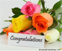 Online Congratulations Gifts from Way2flowers