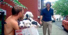 """Frank Serpico (Al Pacino) picks out his dog, Alfie. """"Serpico"""" 1973"""
