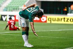 Papo Na Arquibancada: Prazer, Palmeiras 2015!