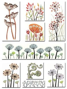 drypoint art seed heads - Google Search