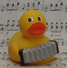 Accordion duck | Duck Show