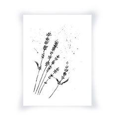 Impression noir et blanc de mon aquarelle originale, fleurs de lavande, noir et…