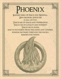 Phoenix Evocation Parchment Book of Shadows Page! Pagan wicca witch in Collectibles, Religion & Spirituality, Wicca & Paganism Pagan Witch, Wiccan, Magick, Celtic Paganism, Wicca Witchcraft, Tatouage Delta, Phenix Tattoo, Animal Spirit Guides, Phoenix Bird