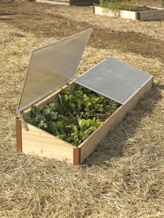 Cedar Cold Frame for raised bed gardening. This handsome Cold Frame is sized to fit our 2x8 elevated raised bed and will extend your growing season by months!