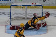 Toledo Walleye Goalie Kaden Fulcher Toledo Walleye, Hockey, Field Hockey, Ice Hockey