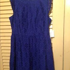 KENSIE navy dress Lace navy dress Kensie Dresses