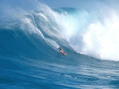 #1556128, surfing category - Images for Desktop: surfing pic