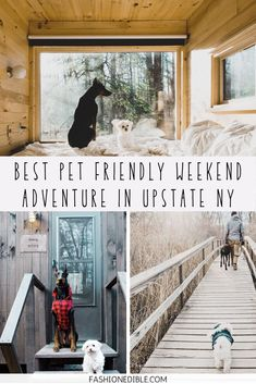 Couples Getaway Upstate NY: Catskills Weekend Getaway Pet Travel, Travel Usa, Travel Tips, Time Travel, Travel Destinations, Vacation Trips, Vacations, Best Hikes, Short Trip