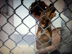 """KEEP ON PINNING this image...SPREAD THE AWARENESS! pinner's words ~ This is so sad.....the caption on this photo...""""They know their time is up-they know their last moments, the last contact they may have. Please share volunteer, transport, adopt, or foster...you can make a difference``just don't look away. Be their voice!"""""""