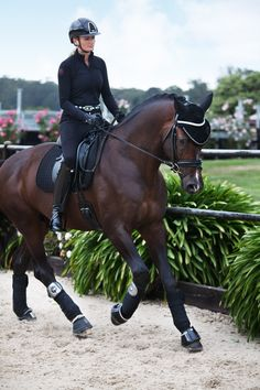 Janina wears Kep Helmet in Cromo S Swarovski Black, Black Monica Gersemi Top, Judi Belt Paris Odessa Double Crystal AB, PK International Breeches. Versace wears Back On Track Saddle Blanket , Jin Stirrups Precious, Eskadron Bandages and Judi Bell Boots (front) , Judi Browband Odessa Double, and Judi Fly Ears Black . All available in store at www.ridersxoxo.com