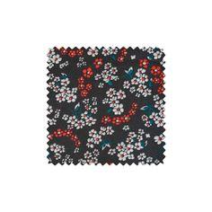 Coton Hanako noir