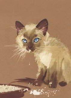 """From the Polish children's book: """"Przyjaciele Konstantego"""" by Adam Augustyn, illustrated by Janusz Grabiański; Art And Illustration, Siamese Cats, Cats And Kittens, Son Chat, Rex Cat, Kinds Of Cats, Watercolor Cat, Oeuvre D'art, Cool Cats"""