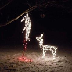 10 Funny Redneck Christmas Decorations For Hunters in measurements 1024 X 768 Redneck Christmas Lightsredneck Christmas Lights - Even the Christmas tree Redneck Christmas, Christmas Humor, Merry Christmas, Christmas Stuff, Christmas Garden, Christmas Time, Christmas Thoughts, Dark Christmas, Christmas Truck