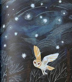Mark Hearld owl illustration from A First Book of Nature by Nicola Davies
