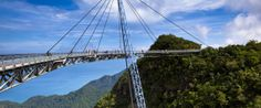 Breathtaking Bridges That Are More Than Just Walkways