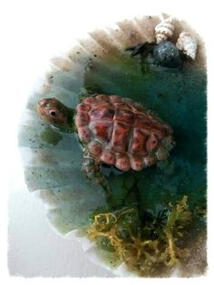 Polymer clay Ooak turtle coming out of the sea on by Ooakminiworld