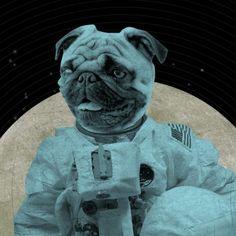 LuciusArt  Astronaut Space Pug 8x10 Art Print