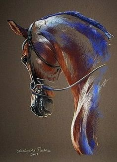 Dressage horse by Paulina Stasikowska Click Visit above for more options