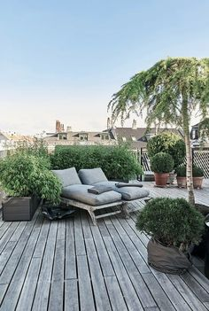Terrace Roof, Rooftop Terrace Design, Terrace Garden Design, Balcony Garden, Balcony Ideas, Rooftop Gardens, Patio Ideas, Garden Ideas, Potted Garden