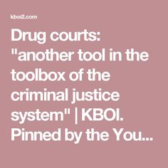 "Drug courts: ""another tool in the toolbox of the criminal justice system"" 