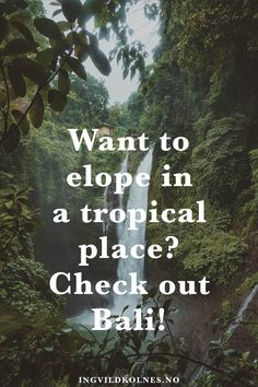 How to break through in Bali - where to elope - stunning destination elopement . How to break through in Bali – where to elope – stunning destination elopement locations – Destination Wedding Inspiration, Destination Wedding Locations, Elopement Inspiration, Wedding Advice, Wedding Planning Tips, Wedding Ideas, Bali Wedding, Elope Wedding, Garden Venue