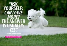 Not sure how much more this pup can give, but it's a good question (and answer) to remember…