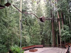 High Ropes CHallenges - Google Search