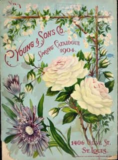 Front cover of C. Young & Sons Co 'Spring Catalogue 1914.' 1406 Olive St, St Louis.Vintage Flower Drawing, vintage printable