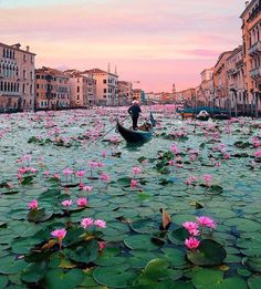 Have you been to Venise ? Beautiful Places To Travel, Cool Places To Visit, Wonderful Places, Beautiful Scenery, Romantic Travel, Beautiful Beaches, Beautiful Things, Dream Vacations, Vacation Spots