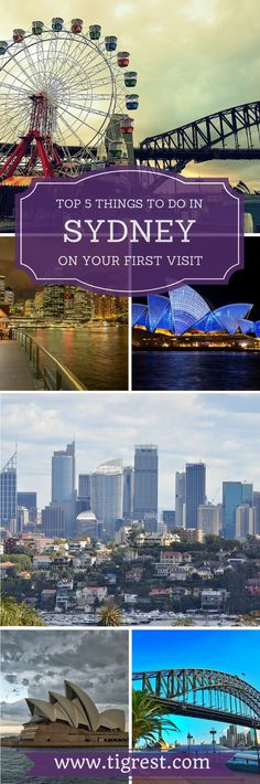 Sydney is a wonderful city full of amazing activities for any taste. Find out how to spend an amazing day in this great city