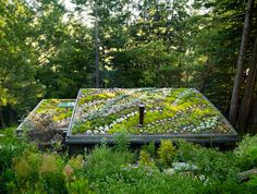 Rooftop garden inspiration| Laurel & Wolf | http://blog.laurelandwolf.com/laurel-loves-7-rooftop-gardens-2/?utm_source=googleplus&utm_medium=org&utm_campaign=ll7&utm_content=LL7rooftopgardens&utm_term=8_2