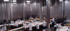 RFW Construction Group - Food Processing Facilities, Cold Storage, Distribution,Industrial / Warehouse, Manufacturing Plants