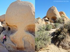 Skull Rock – not top priority, but easy and visible off the main road. There is also 1.5 mile nature trail loop.