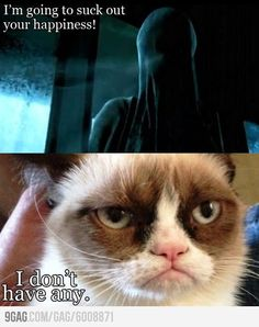 The dementors are out of luck with grumpy cat!  :)