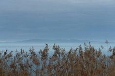 Lake Balaton in the winter