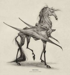Thestral by AudreyBenjaminsen Pegasus zombie skeleton demon dead undead monster beast creature animal | Create your own roleplaying game material w/ RPG Bard: www.rpgbard.com | Writing inspiration for Dungeons and Dragons DND D&D Pathfinder PFRPG Warhammer 40k Star Wars Shadowrun Call of Cthulhu Lord of the Rings LoTR + d20 fantasy science fiction scifi horror design | Not Trusty Sword art: click artwork for source
