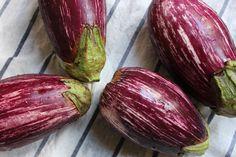 [Leaf Parade. Graffiti Eggplant with Roasted Garlic and Sumac.]