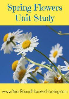 Spring Flowers Unit Study